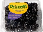 Driscolls Blackberries