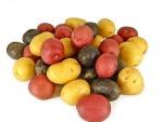 Mixed Potato